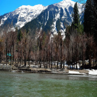 Pahalgam Sight Seeing Tour