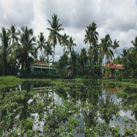 kumarakom Sight Seeing Tour