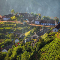 Munnar Place to visit
