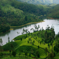 Munnar Places to See