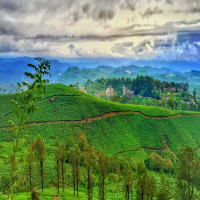 Munnar Travel Plan
