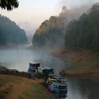 Thekkady Sight Seeing Tour