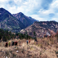 Churachandpur Package Tour