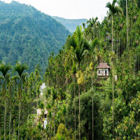 Mawlynnong_village_Attractions