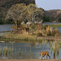 Sawai Madhopur Places to See