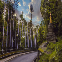Pelling_Package_Tour