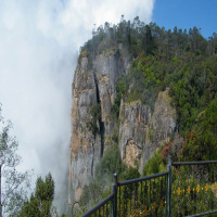 Kodaikanal Sight Seeing Tour