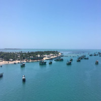 Pamban Island Sight Seeing Tour