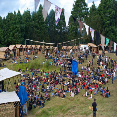 Ziro Music Festival Travel