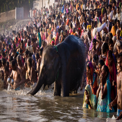 Sonepur Mela Place to visit