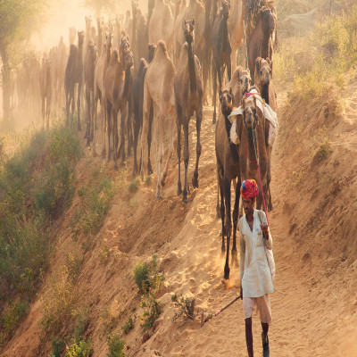 Pushkar Fair Place to visit