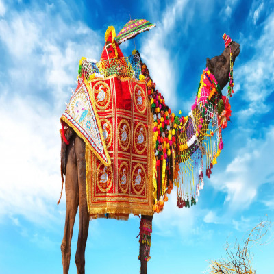 Pushkar Fair Sightseeing