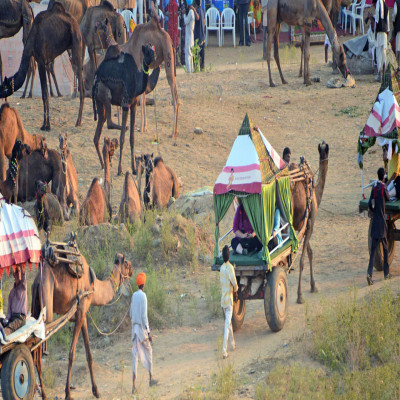 Pushkar Fair Trip