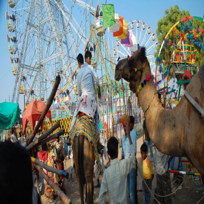 Lucknow mahotsav Travel