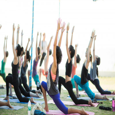 International Yoga Festival Tours