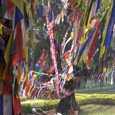 Lumbini Festival Place to visit