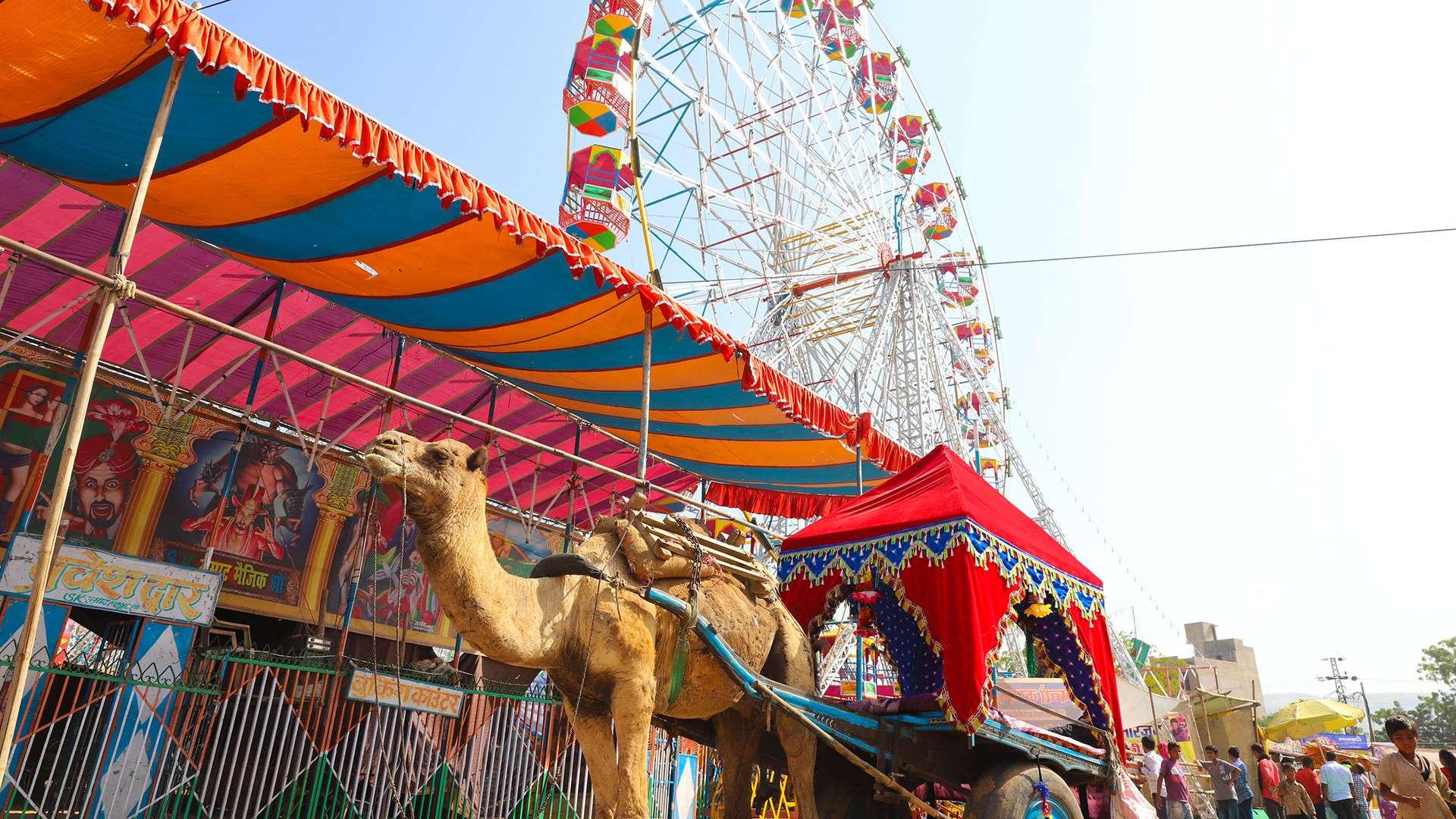 Pushkar_Fair_Attractions