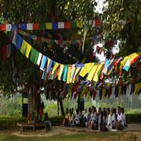 Lumbini_Festival_Attractions