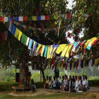 Lumbini_Festival_Attractions