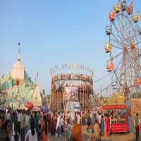 Sonepur Mela Sight Seeing Tour