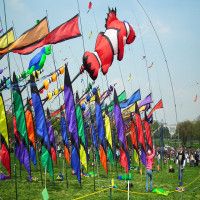 International Kite Festival Places to See