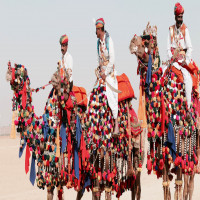 Pushkar Fair Sight Seeing Tour