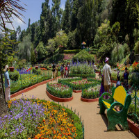 International Flower Festival Place to visit