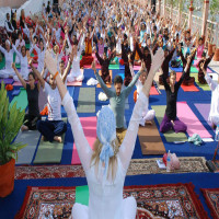 International Yoga Festival Sightseeing