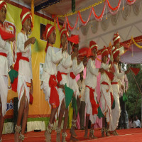 Yelagiri Summer Festival Package Tour