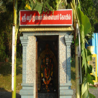 Yelagiri Summer Festival Places to See