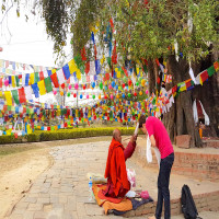 Lumbini Festival Package Tour