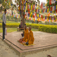 Lumbini Festival Travel