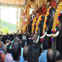 Uthralikavu Pooram Sight Seeing Tour