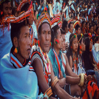Tuluni Festival Package Tour