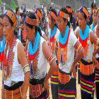 Tuluni Festival Place to visit