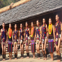 Tuluni Festival Sight Seeing Tour