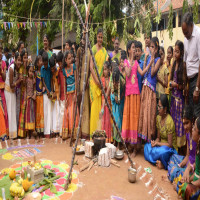 Pongal Sight Seeing Tour