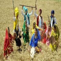 Baisakhi Sight Seeing Tour