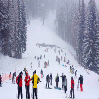 Himachal Winter Carnival Place to visit