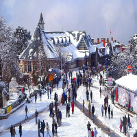 Himachal Winter Carnival Sight Seeing Tour
