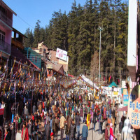 Himachal Winter Carnival Travel Plan