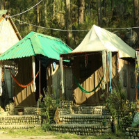 Himachal Hills Festival Places to See