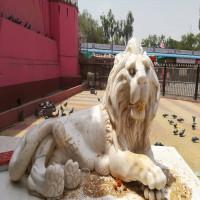 Karni_Mata_Festival_Places_to_visit